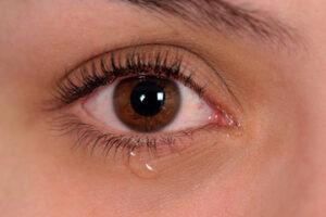 sequedad ocular lagrimeo